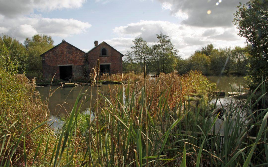 Rivington Chase, Horwich, Lancashire